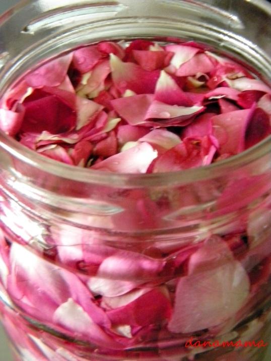 otet de trandafiri
