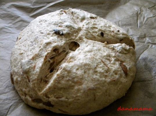 paine cu hribi4